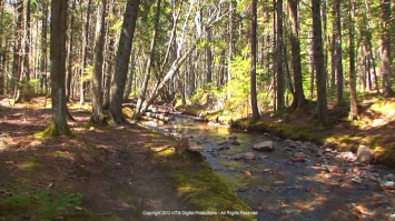 Maine Treadmill Exercise Scenery Virtual Walk Video Mount Desert